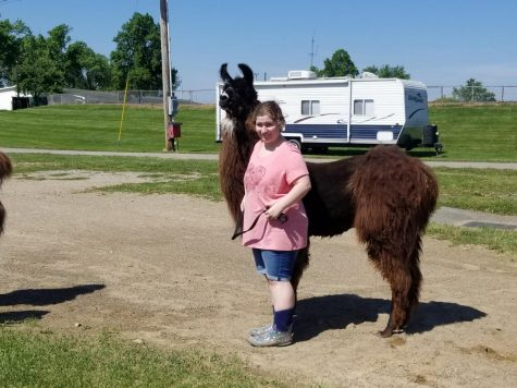 Michaela with one of her llamas